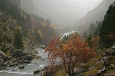 bajo la lluvia http://fc-foto.es/7266438