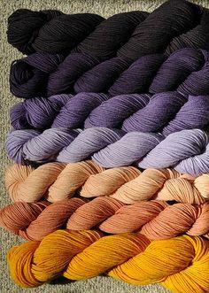 Logwood, Brazilwood, and turmeric dyes