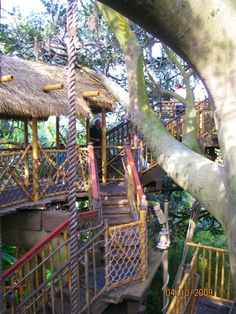 Magic Kingdom - Swiss Robinson Family Tree House
