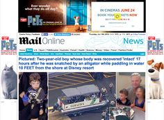 Mail online - Less intrusive and relatively better looking adverts. Scrolling sidebars and no other ads on the page