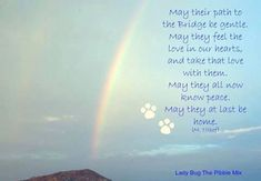 May their path to the rainbow bridge be gentle. ♥