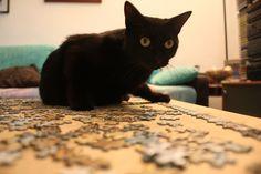 Zaira thinks how make the puzzle