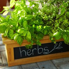 Idea original para tus macetas y jardineras