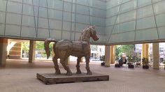 Cavalo de Troia 2013-05-26 17.52.08