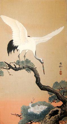 Crane with Nestlings in Pine Tree (c. 1910), woodblock print - Ohara Koson
