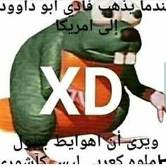 Lol Memes, Stupid Memes, Arte Bob Marley, Fresh Memes, Wholesome Memes, Mood Pics, Funny Laugh, Reaction Pictures, Cringe