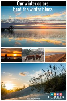 Escape this winter to the Currituck Outer Banks. Take advantage of off-season savings for an unforgettable winter getaway on North Carolina's coast. Enjoy stunning sunrises and spectacular sunsets on our beaches and the Currituck Sound. Go wine tasting at local vineyards. Take a guided tour of the wild Colonial Spanish Mustangs that have lived here for nearly 500 years. Download our visitor's guide to find tips for budget travel and places to stay. visitcurrituck.com/winter