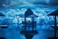 満月の夜、何万もの天灯がチェンマイの空を舞う。