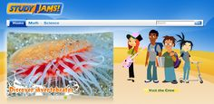 TONS of (free) 1-3 minute Engaging Math & Science Videos for Kids!