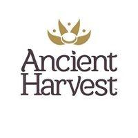 Ancient Harvest produce a non-GMO range of gluten free quinoa products including pasta.