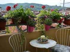 Turin City apartment rental