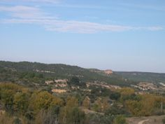Para este miércoles os dejo esta fotografía del paisaje otoñal de nuestro pueblo mas concretamente los chopos de la ribera de la Vega
