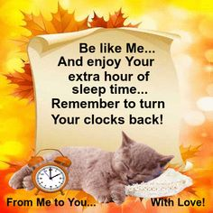 Send this cute sleeping kitten to anyone to remind them to turn their clocks back, with love! Free online A Little Note From Me ecards on Daylight Saving Time Ends Good Morning Cards, Good Morning Wishes, Good Morning Quotes, Daylight Saving Time Ends, Daylight Savings Time, Time Changes Quotes, Fall Back Time, Turn Clocks Back, Spring Forward Fall Back
