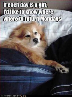 lets return mondays. someone else can have them