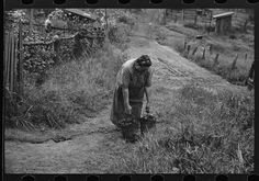 Hungarian miner's wife bringing home coal for the stove from slate pile. Coal camp, Chaplin, West Virginia.  (my daughter's great grandmother was a Hungarian immigrant married to a coal miner)