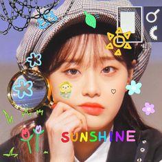 Bird App, Girl Memes, Edit Icon, Kpop Aesthetic, My Brain, Twinkle Twinkle, My Boyfriend, Boyfriends, Kpop Girls