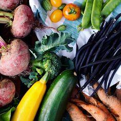 Det är inte särskilt konstigt om du tycker att grönsaker är trist. Grönsaker (precis som all annan mat) smakar bäst om de får lite kärlek och kryddor 🥗💚 En snygg burk med salt, torkade örter och en flaska kallspressad olivolja som får åka fram på middagsbordet räcker långt för att göra grönsakerna lika goda som de är vackra, tycker jag. Enkelt och gott! 👍 Zucchini, Vegetarian, Vegetables, Food, Veggies, Essen, Vegetable Recipes, Yemek, Squashes