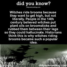 Ever wonder why witches ride brooms?