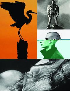 Photo Montage No. Photo Montage, Underwater, America, Movie Posters, Movies, Art, Art Background, Film Poster, Films