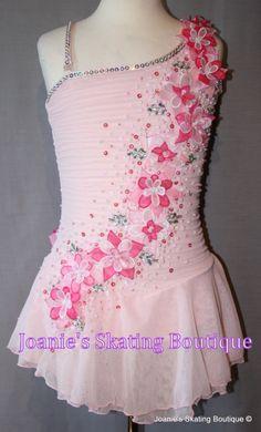 Skating Dress 1893