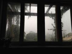 Presente do dia: chuva.