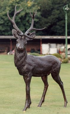 How Bronze Statues Are Made # Deer Statues, Animal Statues, Garden Statues, Animal Sculptures, Sculpture Head, Resin Sculpture, Deer Garden, Garden Bar, Garden Pond