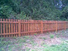 short fences for yards   Wood Picket Fence