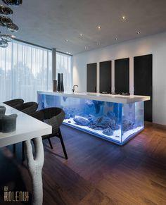 Aquarium onder kookeiland