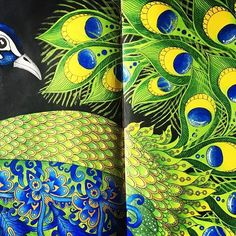 My Royal Peacock  #bayan_boyan #colorpencil #daydreams #daydreamscolouring #hannakarlzon #hannakarlzondagdrömmar