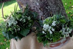 Table arrangements for rehearsal dinner. Woodland theme was reflected in centerpieces created with bush ivy, variegated pittosporum, queen anne's lace, and green dianthus arranged in aged copper containers. Better without the antlers Elk Antlers, Aged Copper, Queen Annes Lace, Woodland Theme, Table Arrangements, Rehearsal Dinners, Love Flowers, Grooms, Ivy