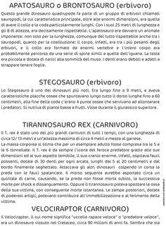 STORIA :: Maestro-Cris Image