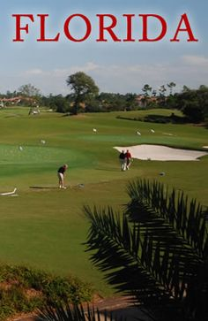Mirasol offers a variety of golf related amenities and services that will fulfill all of your golfing desires! http://www.waterfront-properties.com/pbgmirasol.php