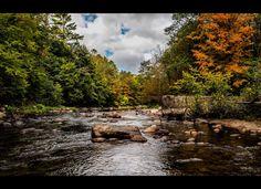 Bouquet River, Lewis, N.Y.