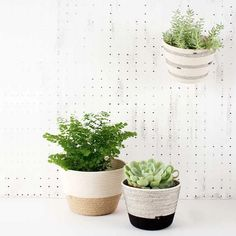 Add some greenery to your home with these unique planters! They can be placed on a windowsill, countertop, shelf, or even hang against the wall. Jute, Rye New York, African Fashion Designers, Reinforced Concrete, African Design, Window Sill, Greenery, Planter Pots, Canning