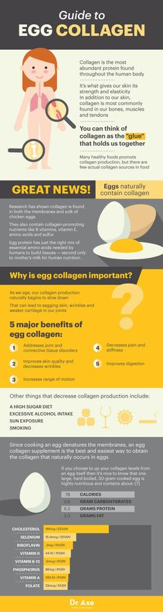 Guide to egg collagen - Dr. Axe http://www.draxe.com #health #holistic #natural