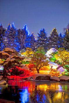 Pretty Cool Places To Visit, Places To Travel, Travel Destinations, Beautiful World, Beautiful Places, Magic Places, Denver Botanic Gardens, Parcs, Vacation Spots
