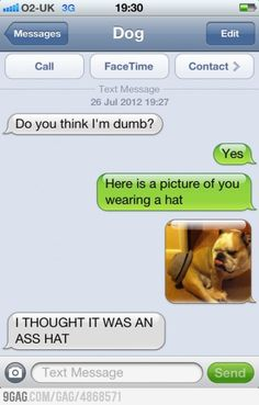 Phone messages, funny stories, funny memes, funny dog texts, funny text f. Funny Dog Texts, Funny Text Memes, Text Jokes, Funny Text Messages, Funny Relatable Memes, Funny Shit, Funny Jokes, Funny Stuff, Funny Pics
