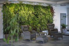 Indoor plantwall at Kumla Bostader, Sweden / Installation 2013 ph.Angelica…