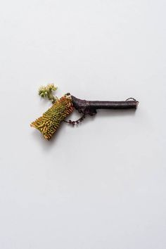 Armas inofensivas hechas a partir de plantas | Gamberra