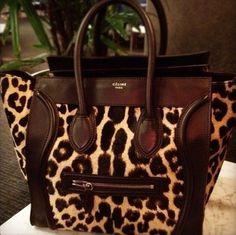 Celine leopard tote, loving it! Motif Leopard, Leopard Tote, Leopard Prints, Animal Prints, Cheetah Print, Beautiful Handbags, Beautiful Bags, Beautiful Things, Dog Accessories