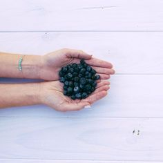 Blueberries Blueberries, Fruit, Simple, Instagram Posts, Beautiful, Blueberry, The Fruit