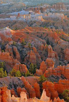 U.S.A., Bryce Canyon NP