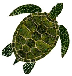 "Green Sea Turtle - Ceramic Pool Mosaic 10"" by 10"""