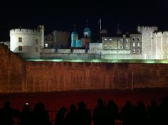 """Tower Poppies at night at the Tower of London November 2014 as part of Paul Cummins amazing installation """"Blood Swept Land and Seas of Red."""""""