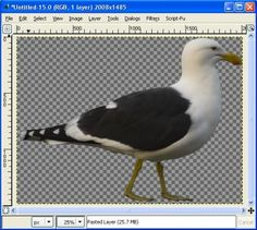 Remove Image Background in Gimp