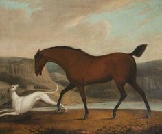 Horse and Greyhound by Clifton Tomson