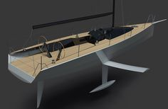 Quant 30 twin dss foil equipped keelboat