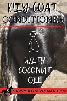 I put together this recipe for DIY coat conditioner after years of buying expensive sprays and it really works! Pretty Horses, Beautiful Horses, Horse Mane, Horse Treats, Horse Care Tips, Horse Saddles, Western Saddles, Horse Halters, Horse Facts