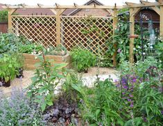 Our premier diamond trellis panels make striking enclosures, screens and features in your garden and are ideal for use with pergola systems; buy online now. Diy Pergola, Pergola Screens, Deck With Pergola, Cheap Pergola, Pergola Plans, Pergola Kits, Pergola Ideas, Gazebo, Jacksons Fencing
