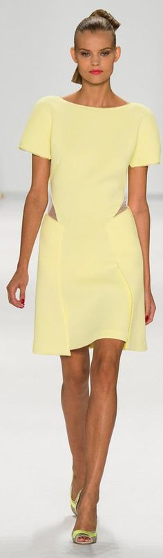 Carolina Herrera Spring 2015 Ready-to-Wear women fashion outfit clothing style apparel @roressclothes closet ideas